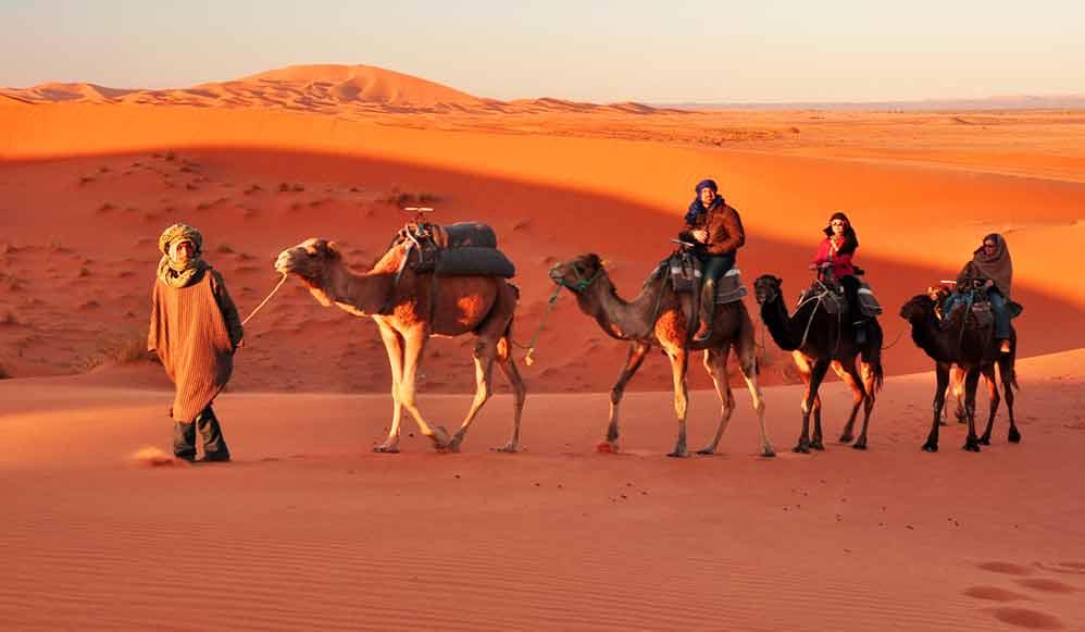 camel-safari--jaisalmer