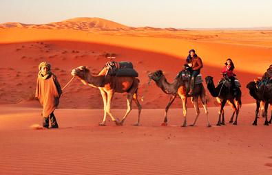 camel-safari-jaisalmer-s